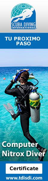 Computer Nitrox Diver